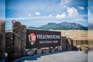 Los famosos parques nacionales de Yellowstone y Grand Teton en los EE. UU. Han establecido un nuevo récord para los visitantes